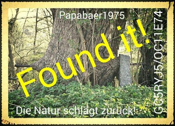 Die Natur schlägt zurück!
